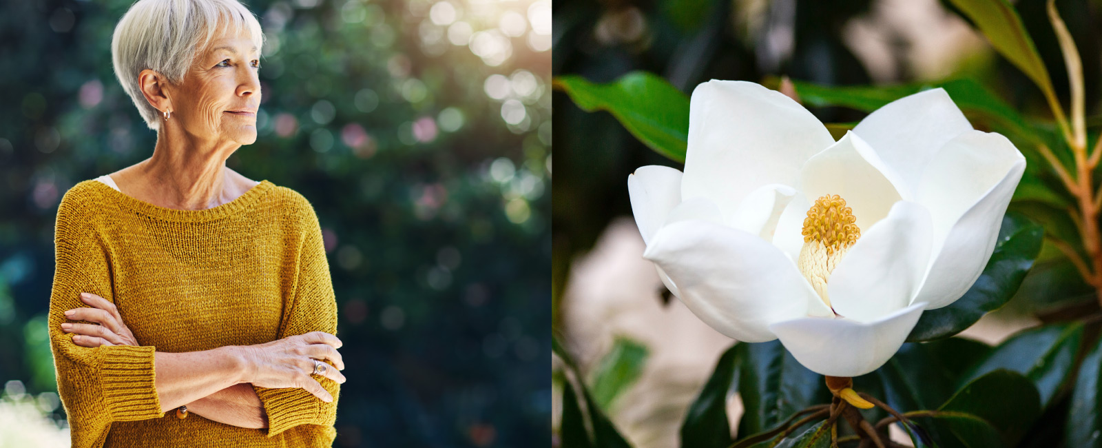 At left: woman looking to the right. At right: close up of a white flower.